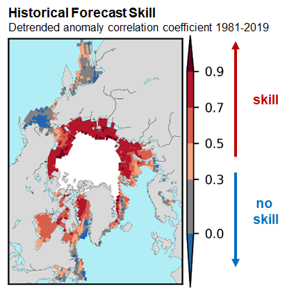 sea ice outlook historical skill